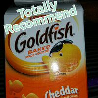 Pepperidge Farm Goldfish World Treasurers Cheddar Baked Snack Crackers uploaded by Keshia D.