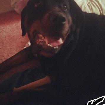 Photo of Nylabone Dura Chew Bone Dog Toy uploaded by Mary J.