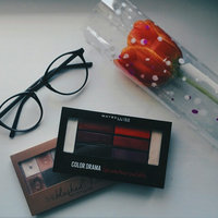 Maybelline New York Expert Wear The Blushed Nudes Shadow Palette uploaded by Tania C.