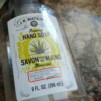 J.R. Watkins Aloe and Green Tea Foaming Hand Soap uploaded by Jocelyne V.