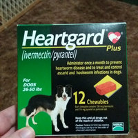 Heartgard Plus Chewables for Dogs Green 2650 lbs 12 Month Supply