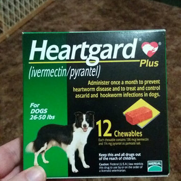 Heartgard Plus Chewables for Dogs Green, 26-50 lbs, 12 Month Supply uploaded by Kacy S.