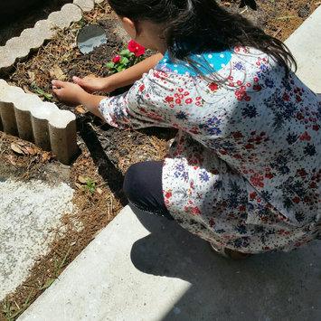 Photo of Swing-N-Slide Willows Peak Wooden Complete Play Set uploaded by Ramonita R.