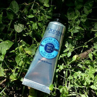 L'Occitane Shea Butter Hand Cream uploaded by Nataliia B.