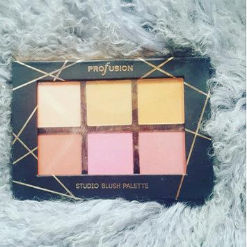 Profusion Cosmetics Studio Blush Palette 6 Color Blush uploaded by Ticotti C.