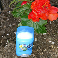 Secret® Cool Waterlily Invisible Antiperspirant/Deodorant 14g Stick uploaded by Dani B.