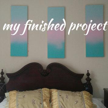 Valspar Color Radiance Destiny Indoor/Outdoor Spray Paint 407.0084514.076 uploaded by Janet B.