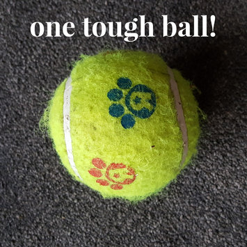 Photo of Toys R Us Tennis Ball Dog Toy uploaded by Elisabeth M.