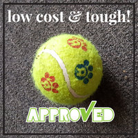 Toys R Us Tennis Ball Dog Toy uploaded by Elisabeth M.