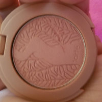 tarte Amazonian Clay 12-Hour Blush Paaarty 0.2 oz/ 5.6 g uploaded by LaChandra J.