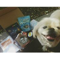 BarkBox uploaded by Brenda M.