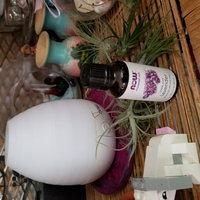 NOW Foods - Lavender Oil - 4 oz. uploaded by Laurel B.