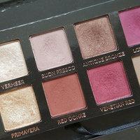 Anastasia Beverly Hills Modern Renaissance Eye Shadow Palette uploaded by Tynna H.