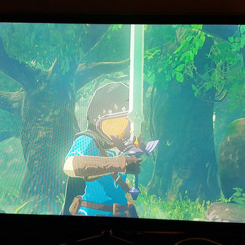 Photo of The Legend of Zelda: Breath of the Wild (Wii U) uploaded by Ali J.