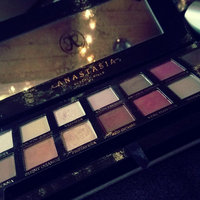 Anastasia Beverly Hills Modern Renaissance Eye Shadow Palette uploaded by Kaitelyn H.