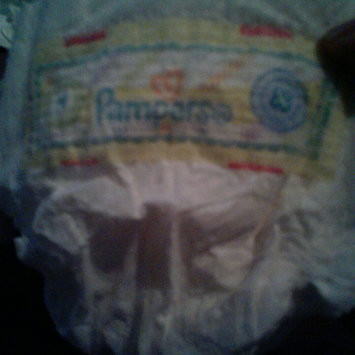 Photo of Pampers Swaddlers Diapers  uploaded by Veronica V.