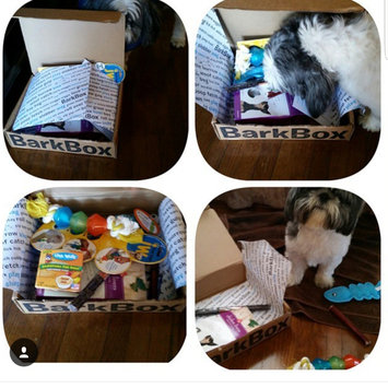 BarkBox uploaded by Brunett Z.