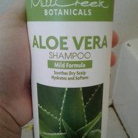 MILL CREEK ENTERTAINMENT Mill Creek Botanicals Shampoo Aloe Vera 16 fl oz uploaded by Amanda M.