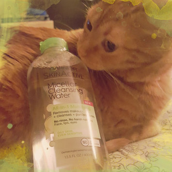 Garnier Skin Skinactive Micellar Cleansing Water All-In-1 Cleanser and Waterproof Makeup Remover uploaded by Tracy H.