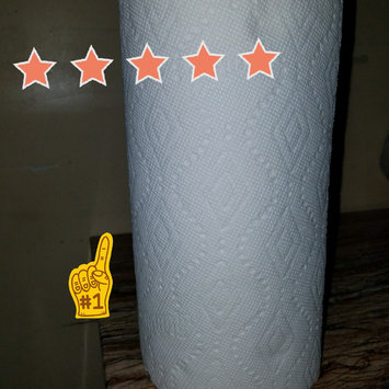 Bounty® Paper Towels uploaded by Lidia R.