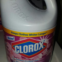 Clorox High Efficiency Concentrated Fresh Meadow Bleach uploaded by Danielle H.