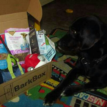 BarkBox uploaded by Kimberly M.