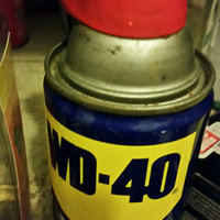 WD-40 Smart Straw uploaded by Ramonita R.