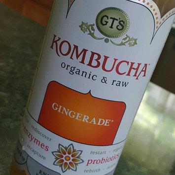 GT's Raw Organic Kombucha Gingerade uploaded by Anita M.