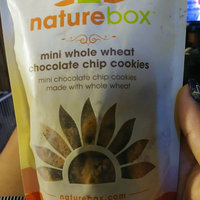 Naturebox Cinnamon Yogurt Mini Grahams 6 oz uploaded by Dee D.