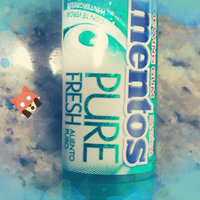 mentos Pure Fresh Wintergreen-Pocket Bottle uploaded by JESSICA C.