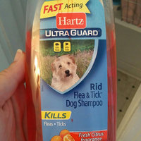 Hartz Advanced Care  2in1 Flea and Tick Dog Shampoo uploaded by Crystal W.
