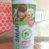 EcoSMART 33130 Organic Spider Blaster, 9-Ounce Aerosol uploaded by Holly T.