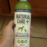 Natural Care 12 oz Flea and Tick Shampoo uploaded by Sumer R.