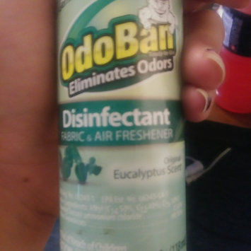 Photo of OdoBan 4 oz. Eucalyptus Disinfectant Fabric and Air Freshener uploaded by Amy G.