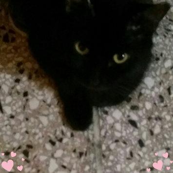 Photo of Pounce Cat Treats uploaded by Nicole Camilo c.