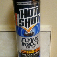 Raid Flying Insect Killer Spray Outdoor Fresh Scent uploaded by Amanda J.