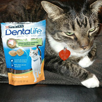 Purina DentaLife Tasty Chicken Flavor Dental Treats for Cats 1.8 oz. Pouch uploaded by samantha m.
