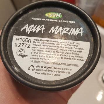 LUSH Aqua Marina Face and Body Cleanser uploaded by Elena Roxana N.