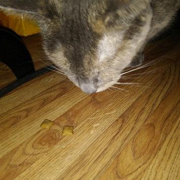 Whiskas WHISKASA TEMPTATIONSA Mega Cat Treat uploaded by L4DY A.