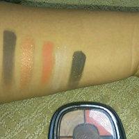 Wet n Wild Fergie Eye Shadow Palette uploaded by Ashley A.