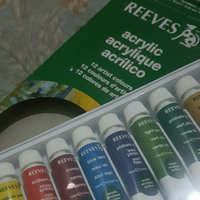 Reeves Acrylic Paints 10ml 12/Pkg-Assorted Colors uploaded by Faride H.