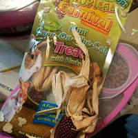 Brown's Tropical Carnival Mini Corn-on-the-Cob with Husks Foraging Treats uploaded by Jessica V.