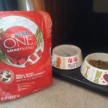 Photo of PURINA ONE® SmartBlend Adult Dog Food Small Bites Beef & Rice Formula uploaded by Amanda R.