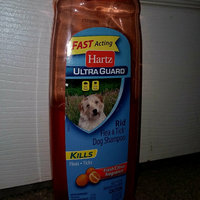 Hartz Advanced Care  2in1 Flea and Tick Dog Shampoo uploaded by leah b.