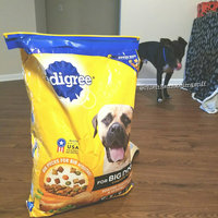 Pedigree® Dog Food Large Breed Nutrition uploaded by Skylar S.