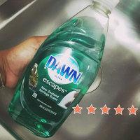 Dawn Escapes Dishwashing Liquid New Zealand Springs uploaded by Orietta A.