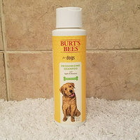 Burt's Bees Deodorizing Dog Shampoo uploaded by Kimberly D.