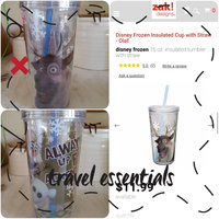 Zak Designs Disney Frozen Sven 16-oz. Insulated Straw Tumbler uploaded by Melissa Z.