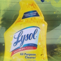 Lysol All Purpose Cleaner Fresh Mountain Scent uploaded by Shawn R.