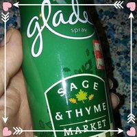 Glade Spray, Spiced Citrus Chic, 9.7 oz (274 g) - S.C. JOHNSON & SON, INC. uploaded by Sonya K.
